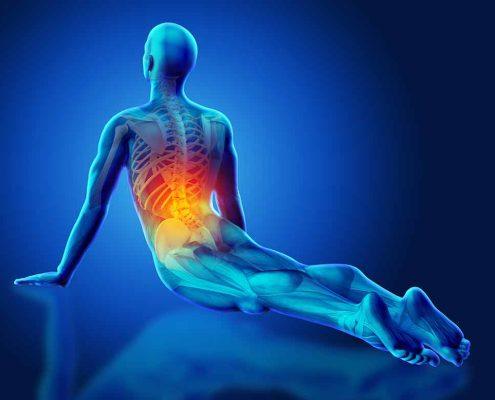 Seminario Anatomia dello yoga vicenza